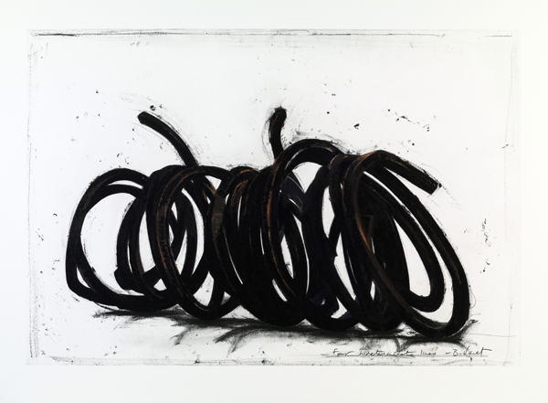 Bernar Venet - Four Indeterminate Lines